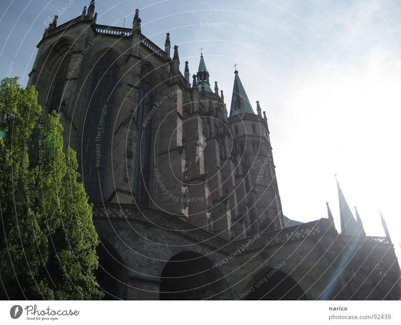 erfurter dom Himmel schön Baum Pflanze Sonne Freiheit Architektur Religion & Glaube hell Deutschland Platz Kirche Schönes Wetter Konzert Kreuz Denkmal