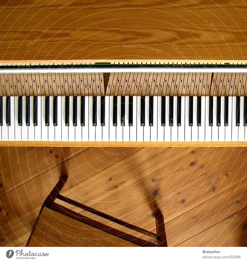 Ein Klavier, ein Klavier! Farbfoto Innenaufnahme Studioaufnahme Menschenleer Textfreiraum oben Tag Schatten Starke Tiefenschärfe Vogelperspektive Glück Spielen