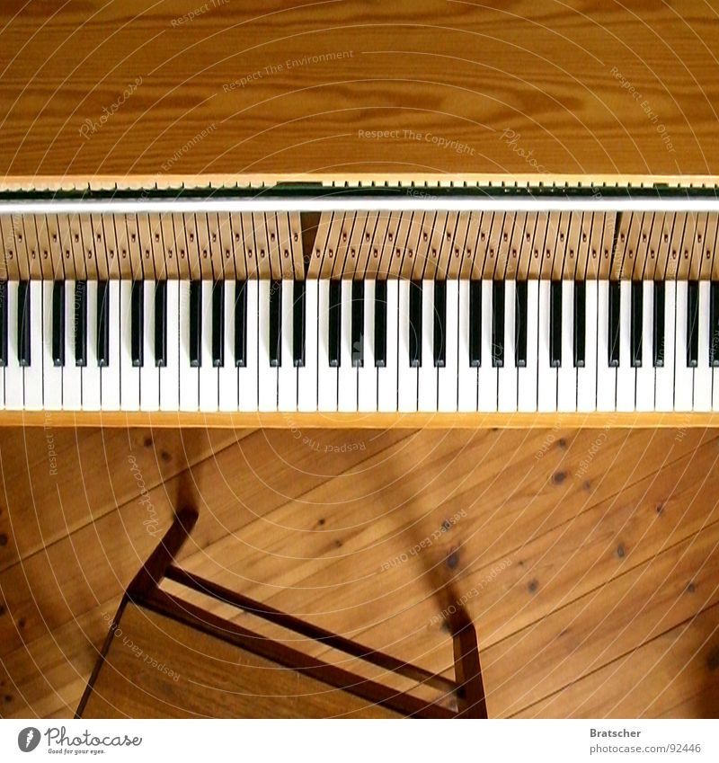 Ein Klavier, ein Klavier! weiß schwarz Spielen Holz Glück Stimmung Metall Musik Kunst blond frei Flügel berühren Konzentration Kreativität Konzert