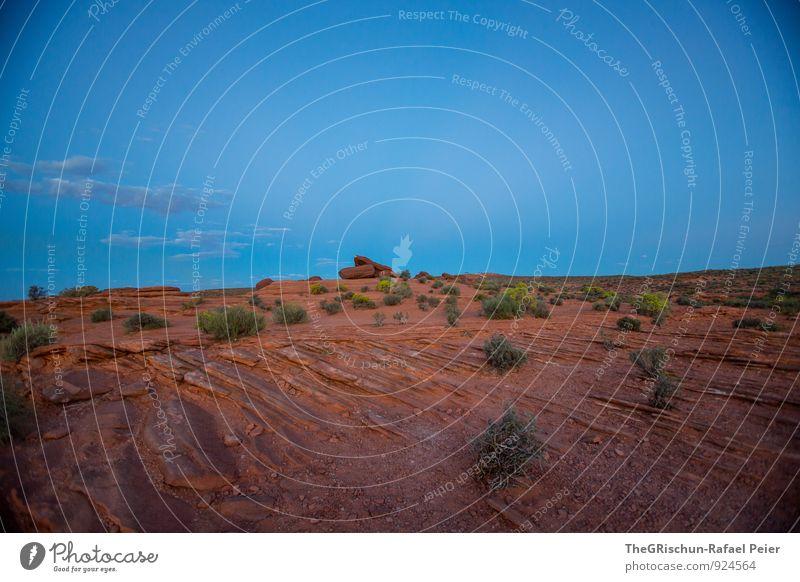 Dämmerung Umwelt Natur Landschaft Urelemente Erde Sand Himmel blau braun grün schwarz Sandstein Felsen Stimmung after sunset Wolken Sträucher Stein Wüste