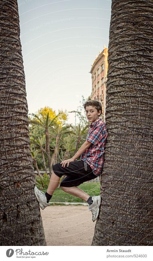 Zwischen zwei Palmen Mensch Kind Ferien & Urlaub & Reisen Jugendliche Sommer Baum Haus Freude Leben Park maskulin Lifestyle 13-18 Jahre Fröhlichkeit Lächeln