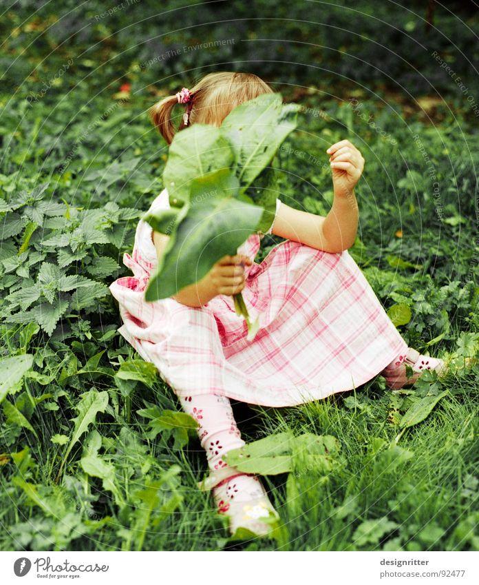 Kontraste Kind Mädchen Kleid rosa kariert Gras Blatt Brennnessel grün Spielen sitzen child Bekleidung grass leaves play Unkraut Heilpflanzen