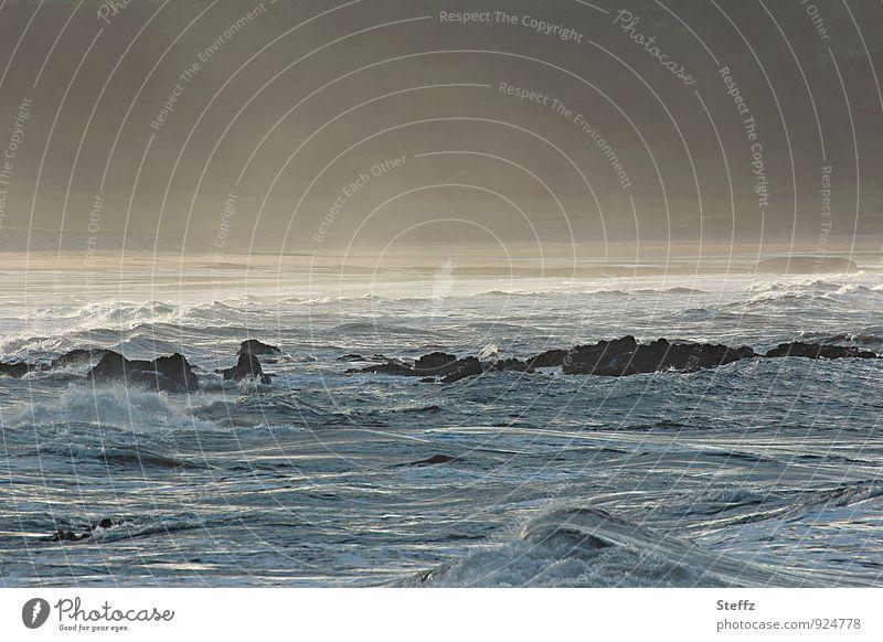 die Bucht Natur Landschaft Urelemente Wasser Nebel Wellen Küste Strand Nordsee Meer Cullen Bay Felsen Schottland schön blau gelb gold Stimmung Meeresstimmung