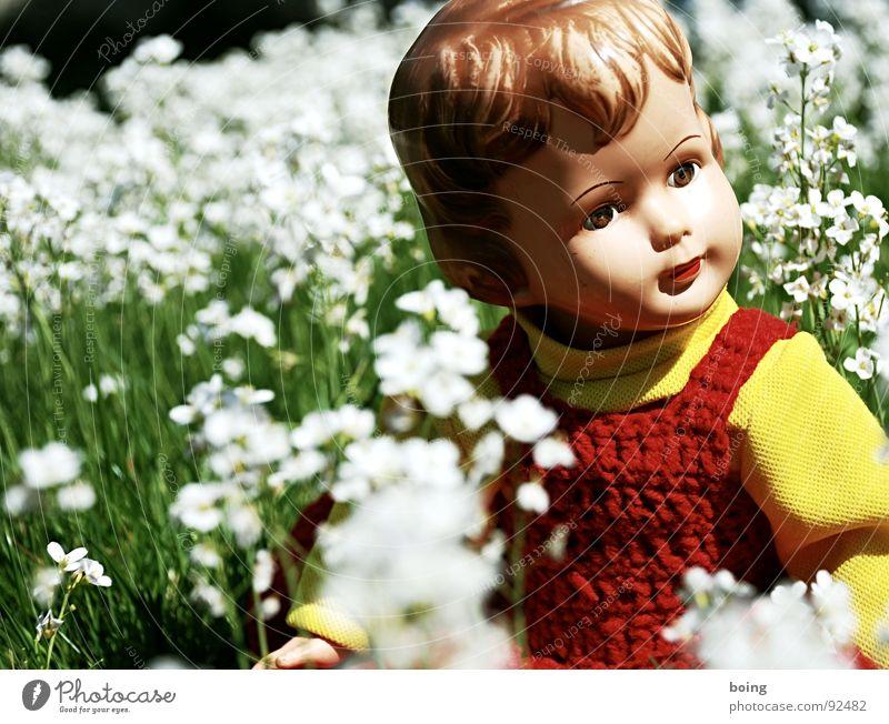 Der Phönix braucht eine weite Sicht Wiesen-Schaumkraut Blühende Landschaften Puppe Energiezentrum Blüte Frühlingsgefühle Denken Ausflug Kurzurlaub Spielzeug