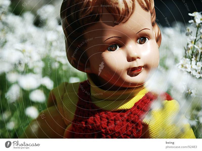 Der Phönix braucht eine weite Sicht Blume Wiese Spielen Frühling Blüte Denken Spielzeug Duft Geruch Puppe Frühlingsgefühle Energiezentrum Wiesen-Schaumkraut