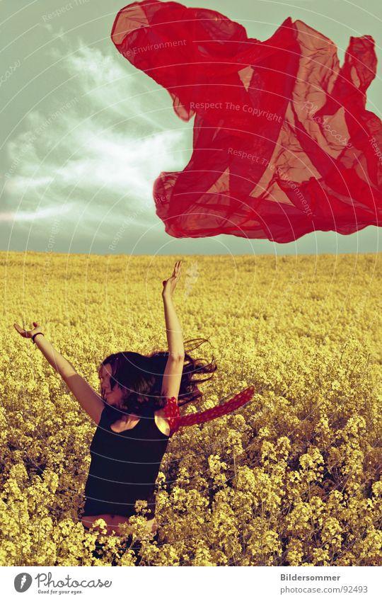 Raps III Frau grün blau rot Wolken gelb Farbe Frühling Landschaft Feld Landwirtschaft Schal Schleier Rapsfeld
