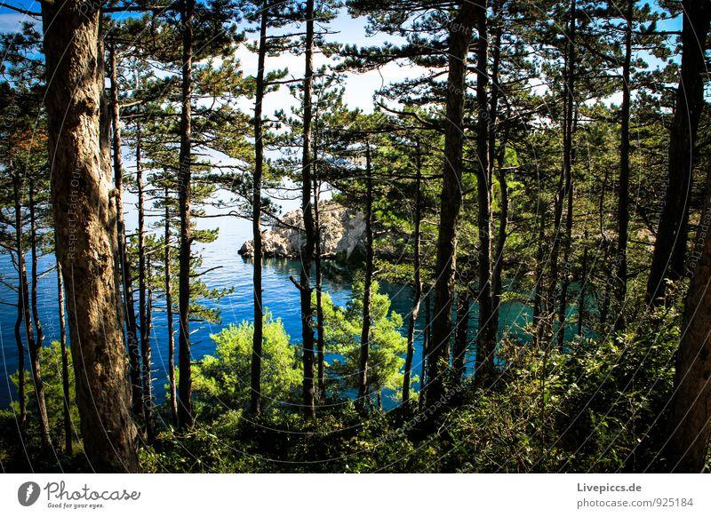 Krk5 Himmel Natur Ferien & Urlaub & Reisen blau Pflanze grün weiß Wasser Sommer Sonne Baum Meer Landschaft Wolken schwarz Umwelt