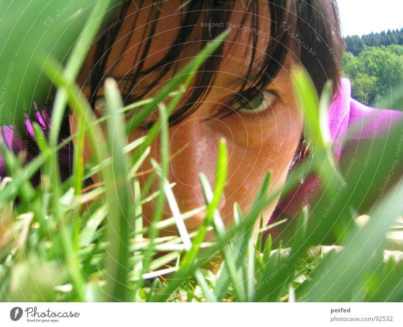Durchdringen II grün violett Gras Frühling Gefühle Gesicht Auge Blick