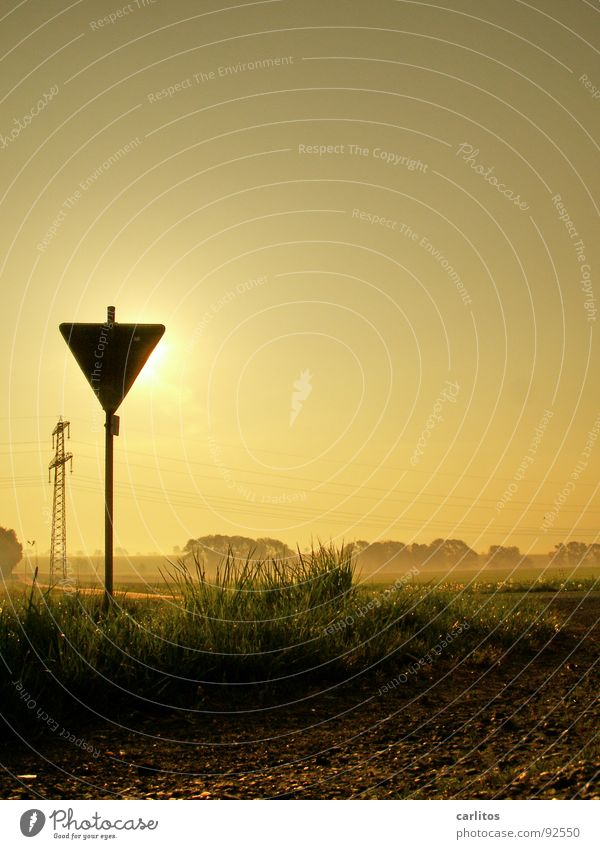 Achtung Sonne Wärme Nebel Schilder & Markierungen gefährlich bedrohlich Hautfalten Freundlichkeit Physik Respekt Vorsicht blenden diffus Gelbstich Morgennebel