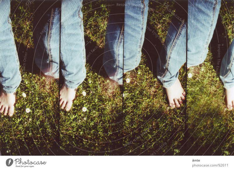 alle meine beine Hose Zehen Gras Gänseblümchen Frühling Sommer mehrere Freude Beine Jeanshose Fuß Lomografie supersampler Freiheit Gefühle viele Wiederholung