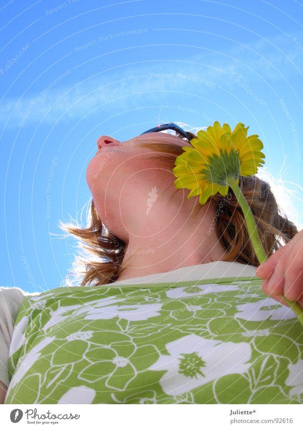 weg is der Flieger Himmel grün blau Sommer Freude gelb Farbe Leben frisch
