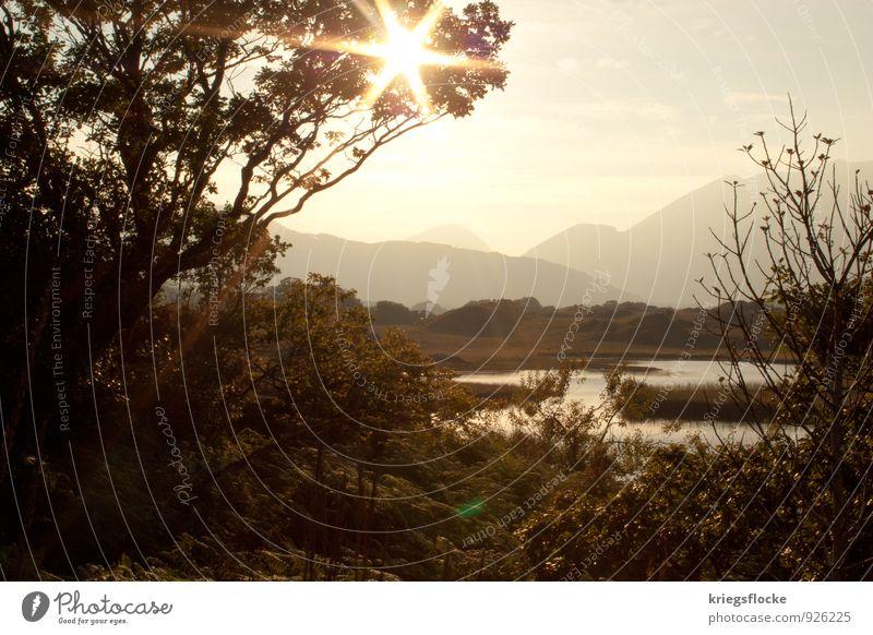 Strahlen Natur Landschaft Pflanze Wasser Baum Sträucher Berge u. Gebirge Gipfel Seeufer Flussufer Abenteuer entdecken Erholung Idylle Farbfoto Außenaufnahme