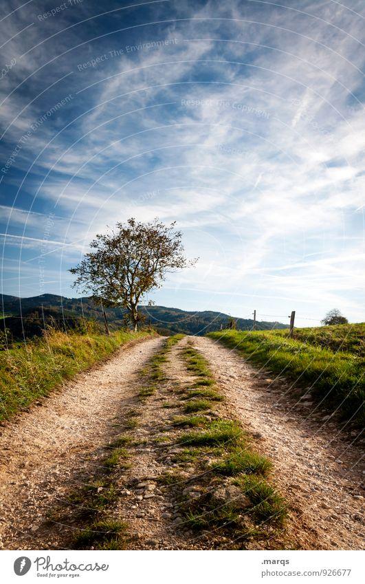 Der Weg ist das Ziel Ausflug wandern Umwelt Natur Landschaft Himmel Wolken Sommer Herbst Schönes Wetter Baum Hügel Wege & Pfade natürlich Stimmung Zukunft