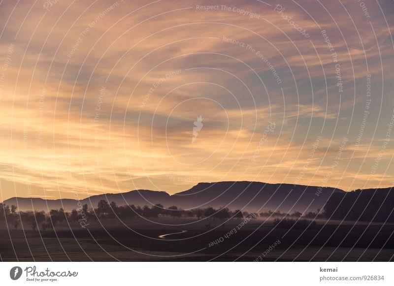 Oh Heimat, wie du wieder aussiehst! Umwelt Natur Landschaft Himmel Wolken Sonnenaufgang Sonnenuntergang Sonnenlicht Sommer Herbst Schönes Wetter Nebel Baum Feld