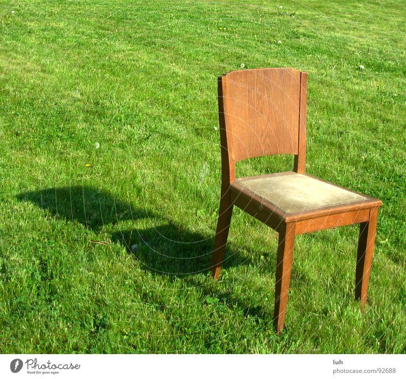 Der Naechste bitte. 2 Holz Holzmehl braun grün Gras Frühling springen Sommer hinsetzen Wiese Einsamkeit Stuhl chair Garten garden brown Rasen Schatten shadow