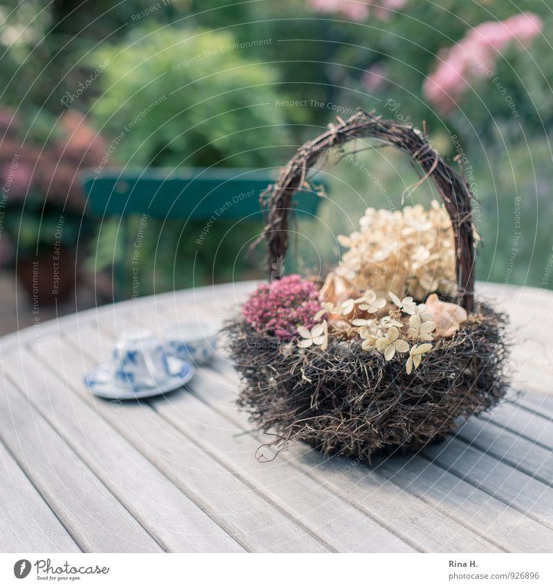 HerbstStill verblüht dehydrieren Vergänglichkeit Stillleben Holztisch herbstlich Korb Hortensienblüte Fetthenne Mokkatasse Tasse Gartenstuhl Außenaufnahme