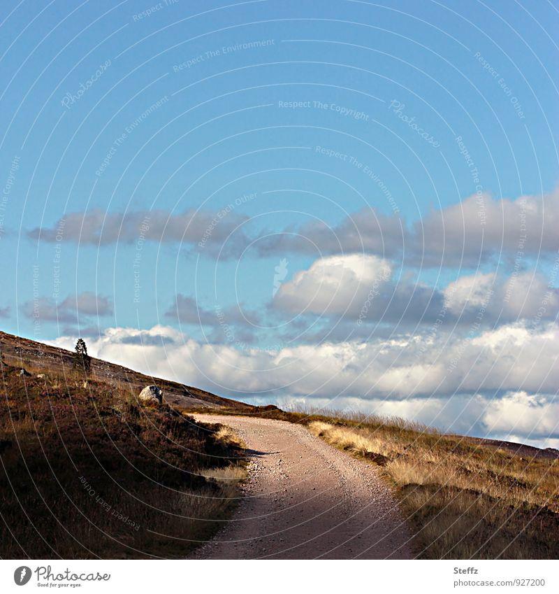 direkt ins licht Natur Sommer Landschaft Wolken Wege & Pfade Sträucher wandern Schönes Wetter Fußweg Hügel aufwärts Blauer Himmel Schottland Wolkenhimmel August Wolkenformation