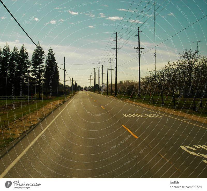 STOP AHEAD Teer Amerika Buchstaben Mittellinie weiß gelb Wolken Baum Straßenrand unterwegs fahren Autofahren Elektrizität Telefonmast Strommast Gras Wiese
