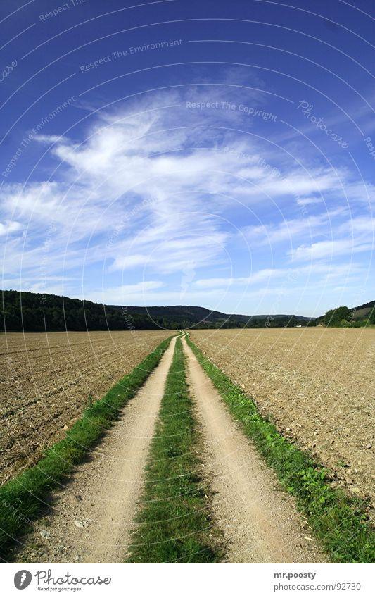 der staubige pfad gottes Wolken grün Staub 2006 Sommer Feld Thüringen transpirieren Aufenthalt Thüringer Wald pflügen Zeit Pause Mitte Horizont