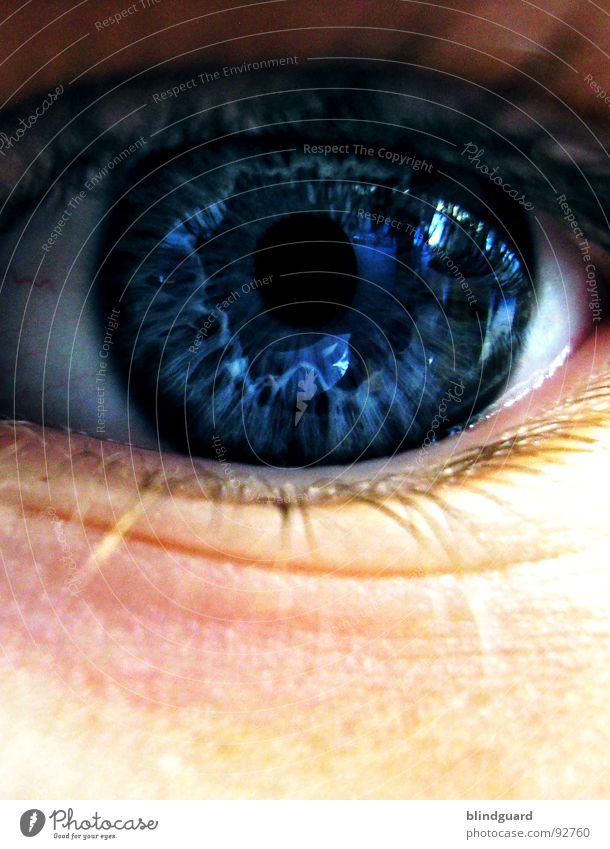 Kinderaugen lügen nicht weiß blau Freude Auge Leben dunkel Gefühle Stil träumen See Denken Haut glänzend groß Kommunizieren