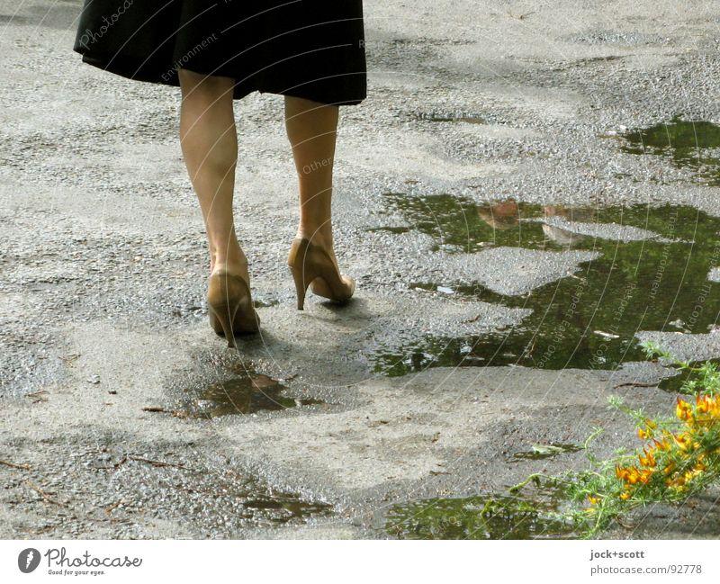 Madame Mensch Frau Blume Erotik Erwachsene Straße Frühling Senior Wege & Pfade Beine Lifestyle elegant 45-60 Jahre laufen retro Kleid