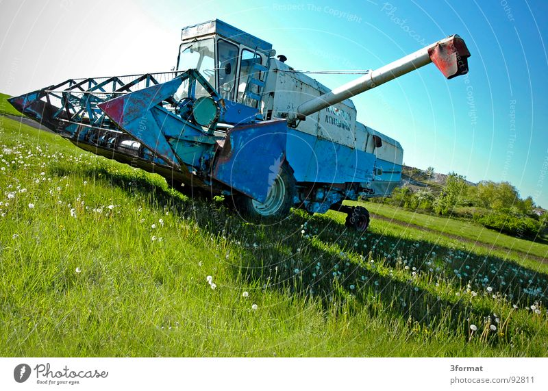 drescher02 Ähren Mähdrescher Maschine Landleben Feld Weizen Landwirt Landwirtschaft Dorf Osten Sachsen-Anhalt Arbeit & Erwerbstätigkeit Mehl grün Pflanze