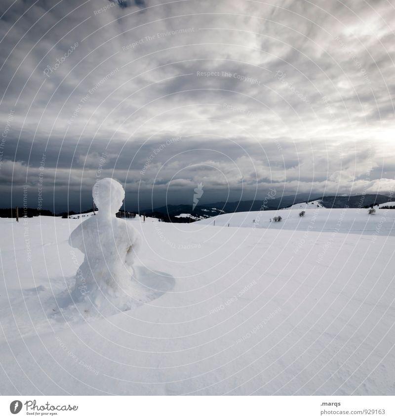Have You Seen this Man? Ausflug Abenteuer Winter Schnee Winterurlaub Natur Landschaft Himmel Gewitterwolken Klima schlechtes Wetter Schneemann Zeichen kalt