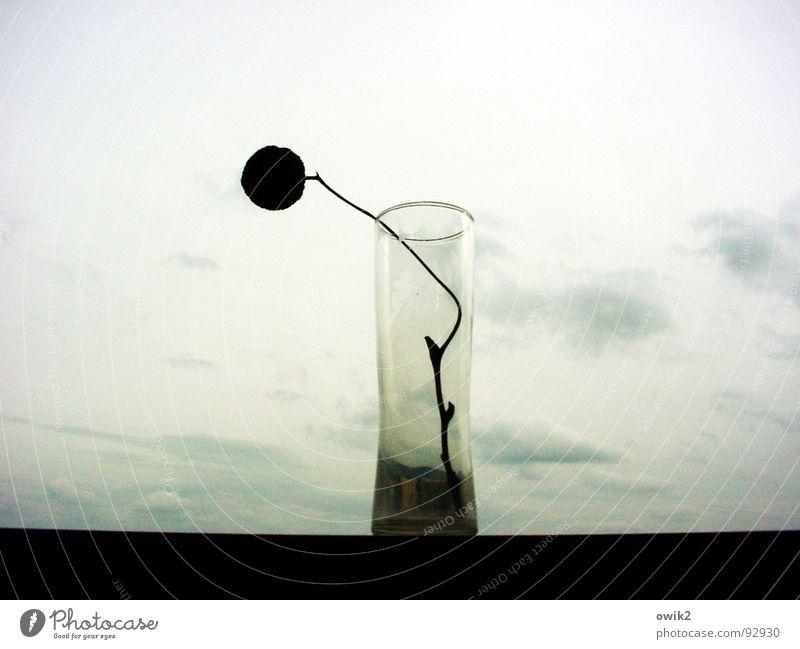 Langeweile Himmel alt Einsamkeit Wolken ruhig Traurigkeit Stil Design Dekoration & Verzierung elegant trist Glas ästhetisch einzigartig Trauer Sehnsucht
