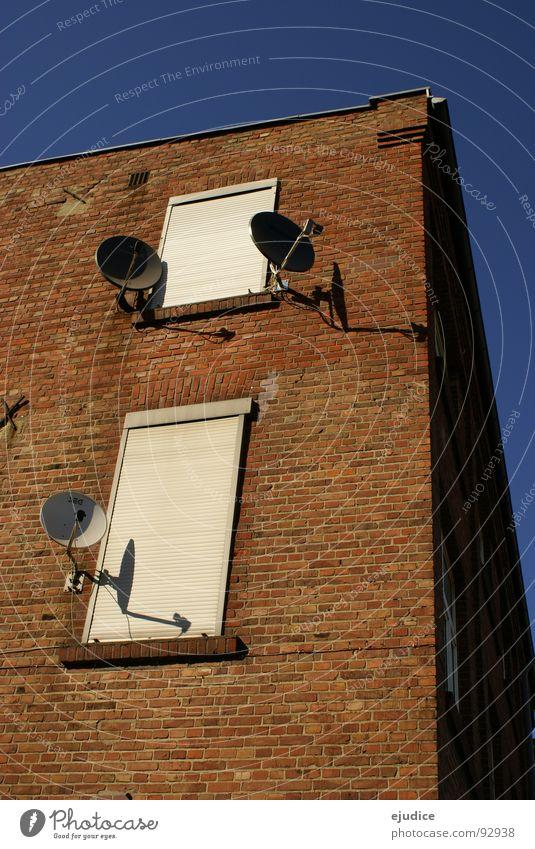 Astra-19,2-Grad-Empfang Satellitenantenne Fernsehen Funktechnik rund Teller Fernsehempfang Antenne Funkwellen Anschluss Fassade Entertainment orange Kreis