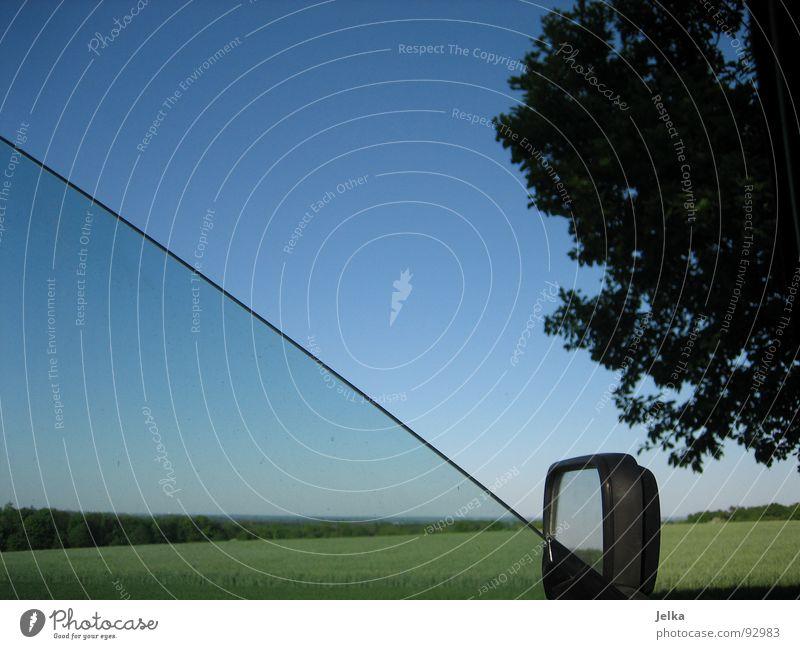 der totale durchblick Himmel blau grün Baum Wiese PKW Feld Autofenster offen Autofahren unterwegs Wolkenloser Himmel Bildausschnitt Blauer Himmel Anschnitt