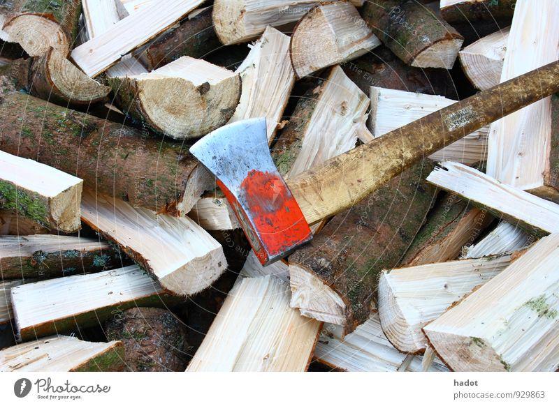 Holzscheite Axt Wald blau Brennholz Holzstapel Stapel Kaminfeuer Brand Baumstamm Farbfoto Außenaufnahme Menschenleer Totale