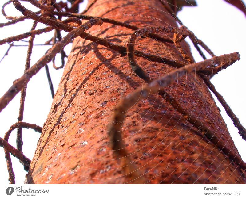 rostiger Zaun rot Makroaufnahme Nahaufnahme Rost