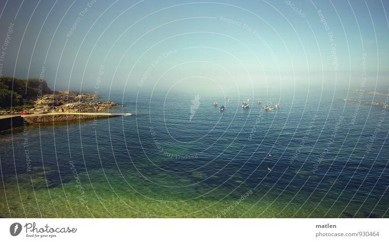 Seenebel Natur Landschaft Sand Luft Wasser Himmel Wolkenloser Himmel Horizont Sonne Sommer Wetter Schönes Wetter Nebel Baum Felsen Wellen Küste Meer