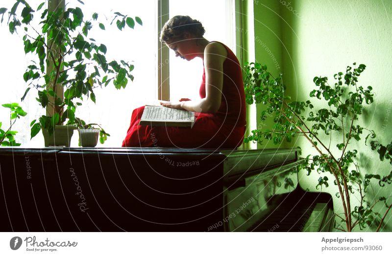 beflügelt Frau Mensch Sonne grün Pflanze rot ruhig schwarz Einsamkeit Fenster Musik Kunst Buch Suche lesen Kleid
