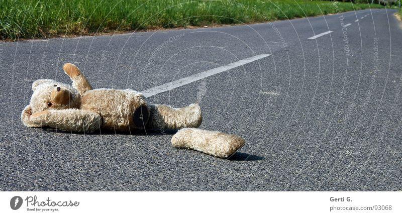 *wink Tier Straße Wege & Pfade Linie gefährlich Asphalt Spuren Spielzeug Verkehrswege obskur verloren Unfall Desaster Behinderte Erste Hilfe