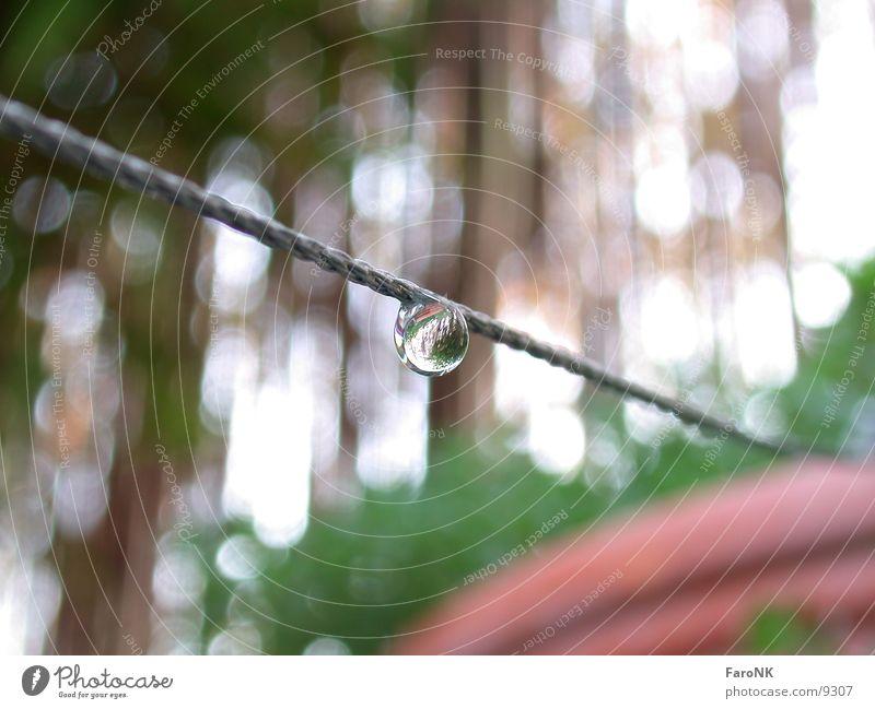 Tropfen Makroaufnahme Nahaufnahme Wassertropfen Seil