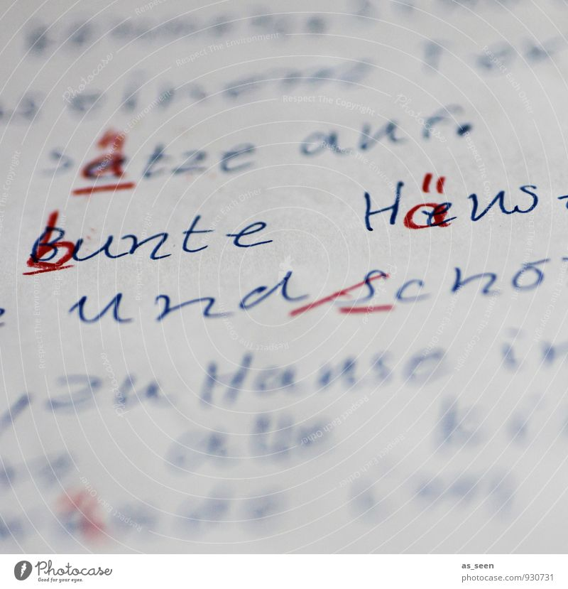 PISA Kindererziehung Bildung Schule lernen Schulkind Prüfung & Examen Rechtschreibung Lehrer Kindheit Leben 3-8 Jahre 8-13 Jahre Schreibwaren Papier Zettel