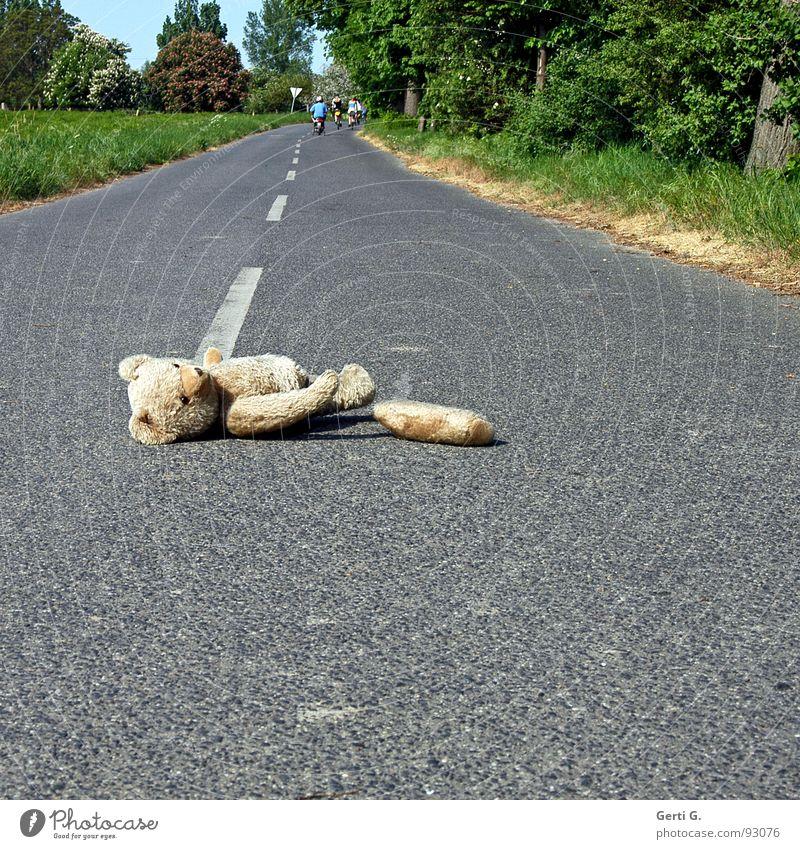 Fahrerflucht Tier Einsamkeit Straße Wege & Pfade Linie Asphalt Spuren Spielzeug Verkehrswege obskur verloren Unfall Desaster Behinderte Erste Hilfe