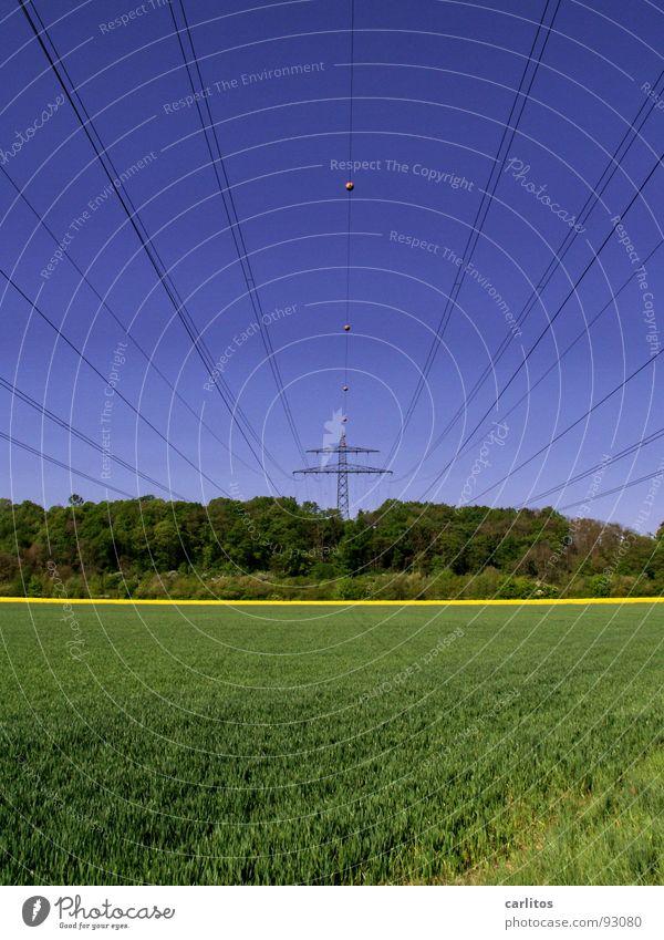 Ist da hinten etwa Raps ??? Himmel grün blau gelb Wald Frühling Linie Feld Wetter Elektrizität Kabel Mitte Strommast Sog