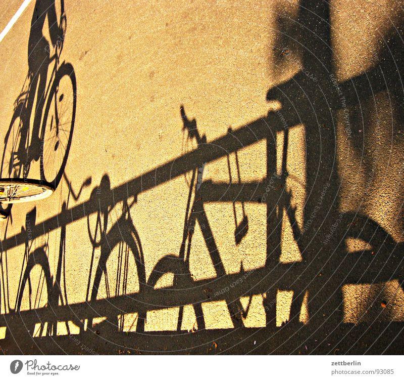 Schatten Straße Fahrrad fahren Asphalt Fitness Verkehrswege obskur Fahrradfahren Schattenspiel Kinderfahrrad Radrennen Schattendasein Damenfahrrad