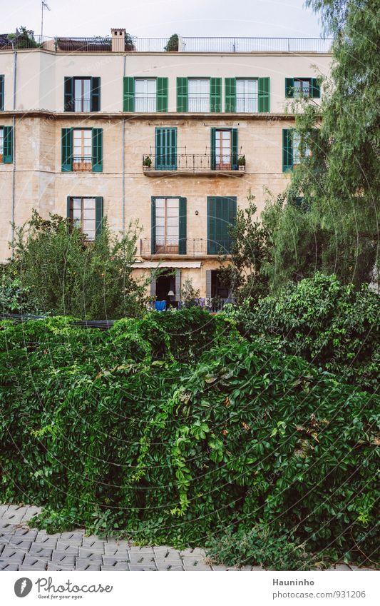 Mehrfamilienhaus Ferien & Urlaub & Reisen Stadt Pflanze grün Sommer Baum Blatt Haus Fenster Wand Architektur Gebäude Mauer Holz Stein Fassade