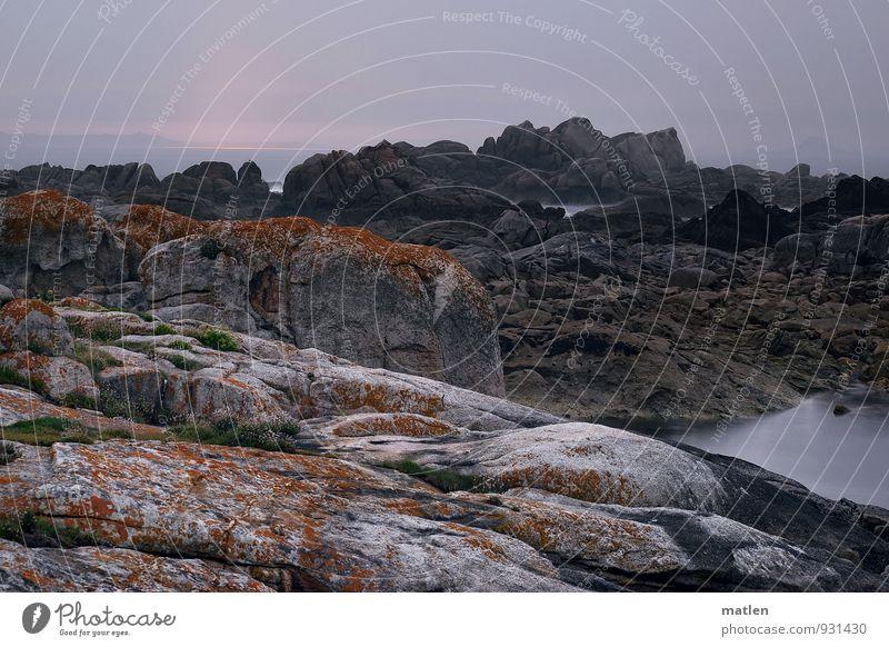 zur Hölle Landschaft Wasser Himmel Wolken Sonnenaufgang Sonnenuntergang Herbst Wetter schlechtes Wetter Moos Hügel Felsen Küste Strand Riff Meer braun grau rosa