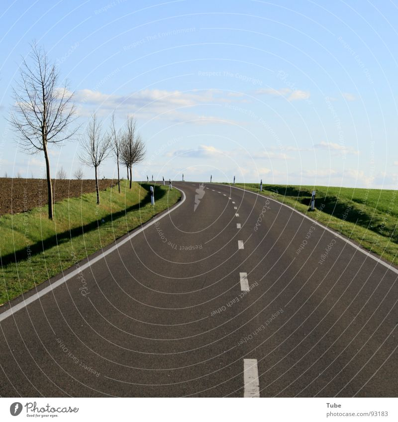 Zum Horizont, bitte links herum Himmel Natur blau weiß grün Baum Wolken Landschaft Ferne Wiese Straße Wärme Gras Freiheit grau Horizont