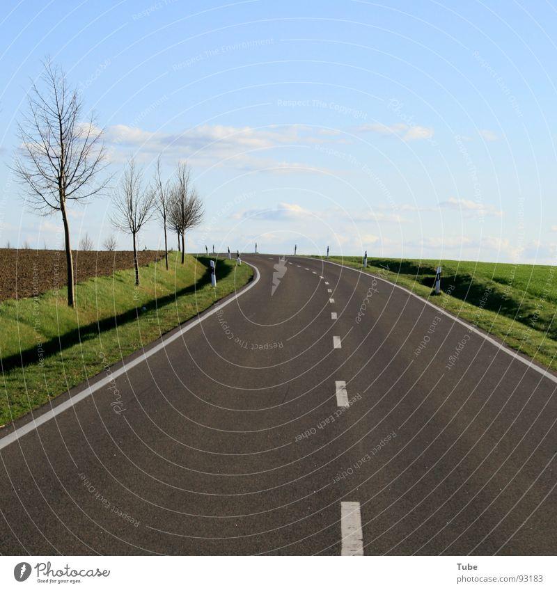 Zum Horizont, bitte links herum Himmel Natur blau weiß grün Baum Wolken Landschaft Ferne Wiese Straße Wärme Gras Freiheit grau