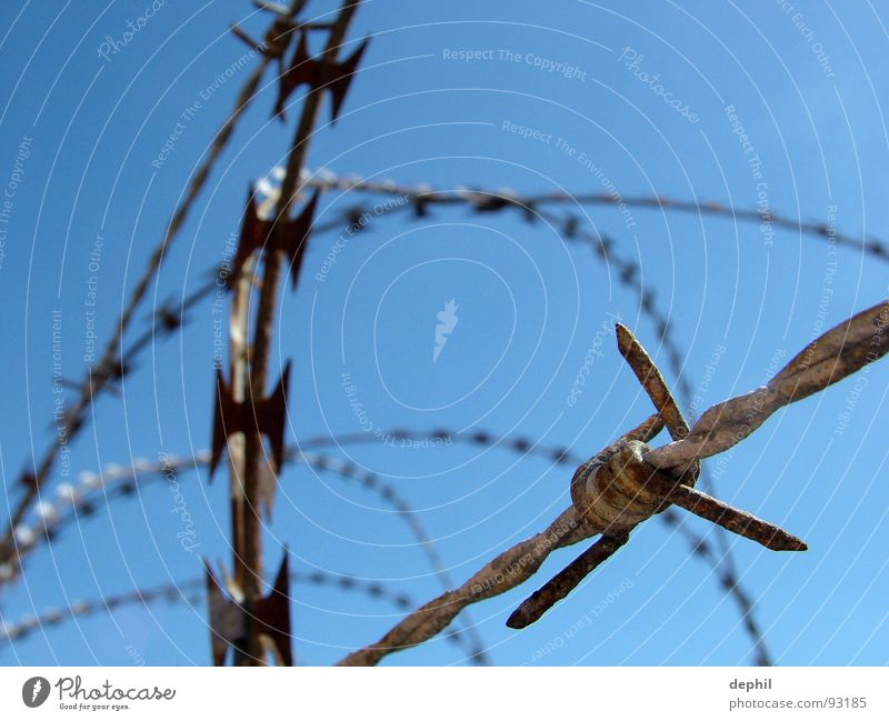 keep out Stacheldraht Zaun Sicherheit Barriere stoppen Eisen Draht stachelig gefährlich Festung sicherheitsvorkehrung kein zutritt abzäunung Rost