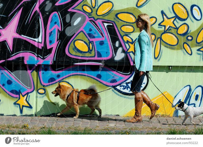 Heidi Klum geht Gassi Frau blau Sommer gelb Hund Graffiti rosa laufen Spaziergang Freizeit & Hobby Gemälde zyan sprühen