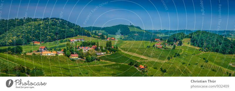 Sommerpanorama Natur Ferien & Urlaub & Reisen Baum Erholung Landschaft ruhig Wald Umwelt Berge u. Gebirge Leben Wiese Gras Felsen Feld Tourismus