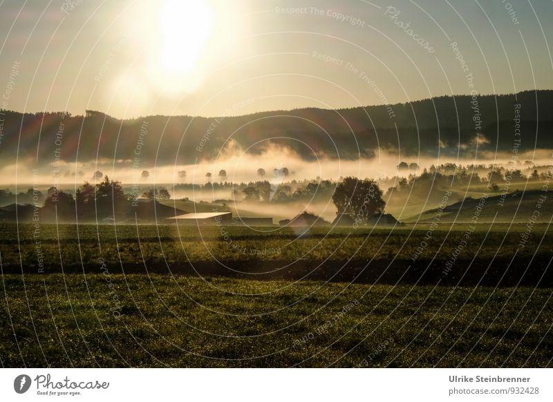 Nebelwallen 1 Umwelt Natur Landschaft Pflanze Luft Wasser Wolkenloser Himmel Herbst Wetter Schönes Wetter Baum Gras Sträucher Feld Wald Hügel Gebäude Bauernhof