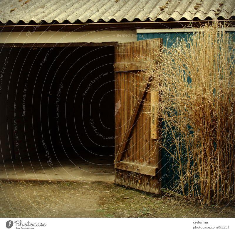 Garage dunkel unheimlich geheimnisvoll schwarz Eingang Einfahrt Ausgang Platz Kammer Gebäude Wellblech Sträucher unklar Fahrzeug Sicherheit schließen gefährlich
