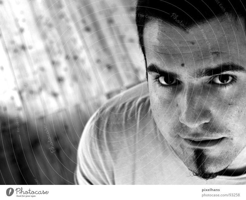 a look to heaven's gate Junger Mann 18-30 Jahre Selbstportrait Blick in die Kamera Kinnbart Anschnitt Textfreiraum links Männergesicht Männerauge Augenbraue